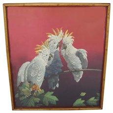 Rare Art Deco Julius Moessel Cockatoo Parrot Print in Bamboo Frame