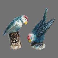 Vintage Turquoise Parakeet Parrot Salt and Pepper Set