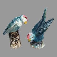 Vintage Turquoise Parakeet Parrot Salt and Pepper Set