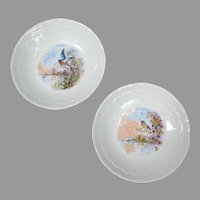 Vintage Limoges France Berry Bowls with Bluebird Birds