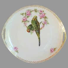 Vintage Parakeet Parrot Platter from Germany