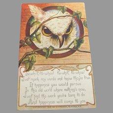 Turn of the Century Antique Owl Postcard