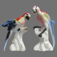 Vintage Miniature Macaw Parrot Figurines
