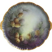 Hand Painted Alboth & Kaiser Cake Platter by Surber