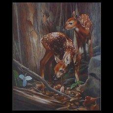 Twin Fawns- Original Watercolor Painting by Karen Lathem