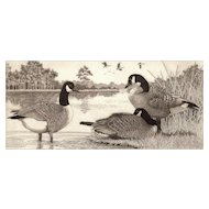 "Original Etching by Listed Artist, David Hunter- ""Trio"" (Canadian Geese)"