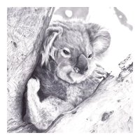 Original Graphite Drawing by Contemporary Listed Artist, Sue deLearie Adair-Joey