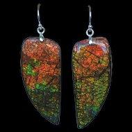 Huge Multi-Color Dragonskin Ammolite Earrings