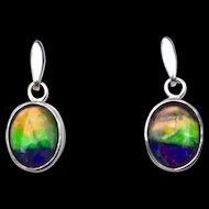 Colorful Ammolite Earrings