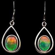 Ammolite Earrings - Red and Green