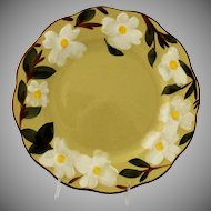 Vintage White Dogwood Dinner Plate by Stangl Pottery Hand Painted