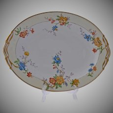 Vintage Limoges Bernardaud Riviera Oval Serving Platter 11.50 Inches Dish