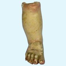 Early Santos or Creche Leg