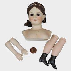 Patti Jene Bisque Doll Head plus Parts
