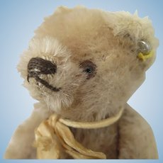 Vintage Steiff Blond Bear 5.5 inches
