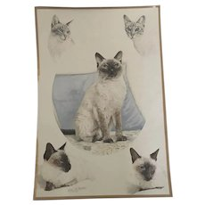 Beautiful Siamese Cats Watercolor Painting Signed Bratton '82