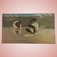 Antique Dog and Cats Oil Painting