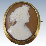 Antique 14k Yellow Gold & Shell Cameo Brooch Pin