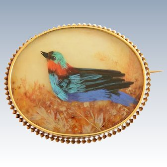 Victorian French Mother of Pearl & Natural Colorful Feathers 18K Yellow Gold Brooch/Pin.