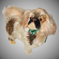 Beautiful Eduard Cramer Tipped Mohair Pekingese Dog