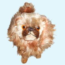 Darling Pekingese Dog Mohair Dog