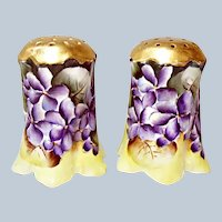 Violets Galore!  Bavaria Germany Porcelain Salt and Pepper shakers - Ca. 1890's