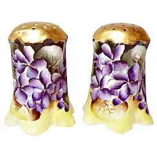 Violets Galore!  Bavaria Germany Porcelain Salt and Pepper shakers - Ca. 1890's