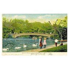 Postcard Swan Pond Central Park New York 1906 Glitter