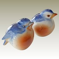 Salt and Pepper Shakers Bluebirds