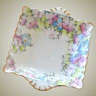 Dish Staffordshire China Exquisite Pastel Hand Painting