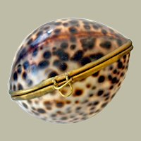Natural Cowrie Shell Trinket Ring Coin Box