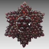 Genuine Natural Bohemian Garnet Starburst Brooch