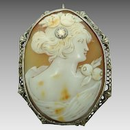 14 Karat Shell Cameo Filigree Pin with .20 Carat Diamond