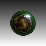 Victorian Celluloid Domed Bubble Button