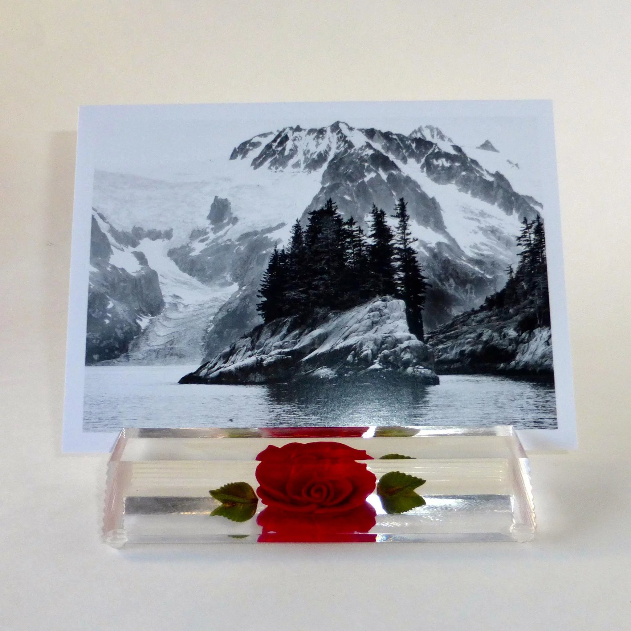 Reverse Carved Lucite Rose Business Card Holder or Photo Display ...