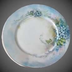 Hutschenreuther 'Favorite' Bavaria Hand Painted Forget-Me-Not Floral Plate