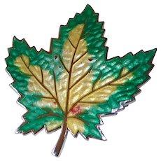 Sterling & Translucent Enamel Autumn Maple Leaf Pin
