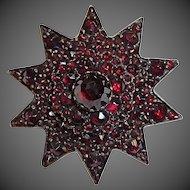 Antique Victorian Rose Cut Garnet Star Pin