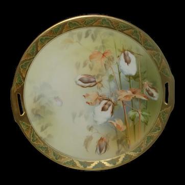 R S Germany Tillowitz Porcelain Cake Plate