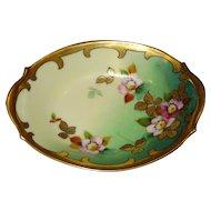 Beautiful Pickard China Limoges Oval Dish