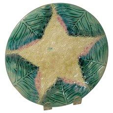 Majolica Etruscan Star Plate
