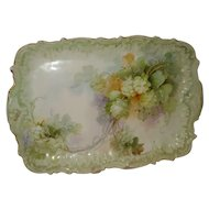 Beautiful Limoges Porcelain Tray