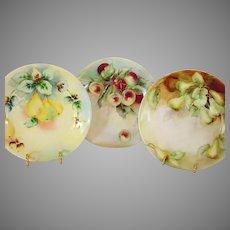 3 Limoges Plates ~ Hand Painted Fruit ~ Delinieres & Co D&C / L BERNARDAUD B&C 1900-1914