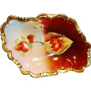 """Austrian Porcelain Dish ~ Hand Painted Autumn Currants ~ Pickard Artist Signed """"Hahn"""" ~ P.H. Leonard NY based Import CO ~ Jul M Brauer Chicago IL 1905-1910"""
