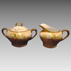 Gorgeous German Porcelain Creamer and Sugar ~ Hand Painted with Yellow Roses ~ KPM krister porcelain manuf.  ca. 1904