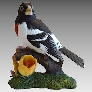 Rose Breasted Grosbeak  ~ Lenox Garden Bird Sculpture 1991