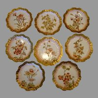 Set of 8 English Plates ~ Hand Painted  Flowers and Gold Outlined ~ Doulton,Burlsem c. 1880's