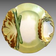 "Exquisite Limoges Porcelain 10 1/4"" Asparagus Plate ~ Hand Painted ~ Delinieres & Co Limoges France  1879 - 1893"