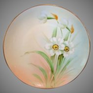 Gorgeous Porcelain Cabinet Plate by PICKARD Studios ~signed by Curtis Marker. Pheasant's Eye Daffodils / Narcissus – Hand Painted- Pickard Studios Chicago IL 1912-1918