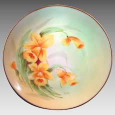 Gorgeous Porcelain Cabinet Plate by PICKARD Studios ~signed by Harry E. Tolley ~ Daffodils / Narcissus – Hand Painted- Pickard Studios Chicago IL 1912-1918 Favorite Bavaria